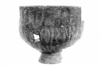 Pogled u neolitsku prošlost